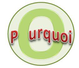 Bouton Pourquoi.JPG